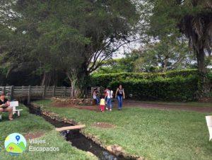 Hacienda La Gloria - Zonas Verdes