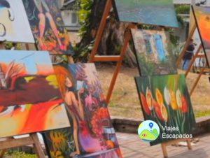 Exhibiciones en el Parque del Peñon