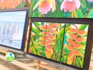 Otras exhibiciones Parque del Peñon